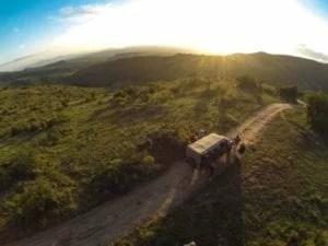 Kenya-Borana-Nov-2014-Max-Melesi-2