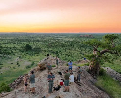 safari-guide-course-ecotraining-featured-image