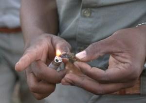 burning elephant dung