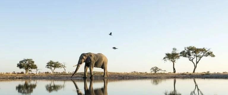 EcoTraining Quiz - Botswana