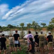 EcoTraining Pridelands Camp - A mutualistic relationship - Animals & EcoTraining
