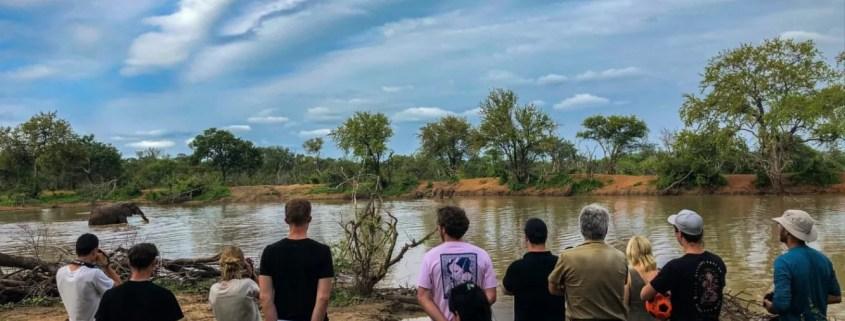 EcoTraining Pridelands Camp