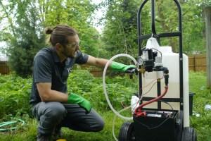 Worker testing for Dutch Elm Disease