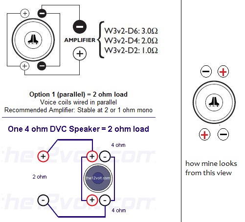 jl audio 13w7 wiring diagram great hammerhead shark w7 help with cleansweep installation sony nav