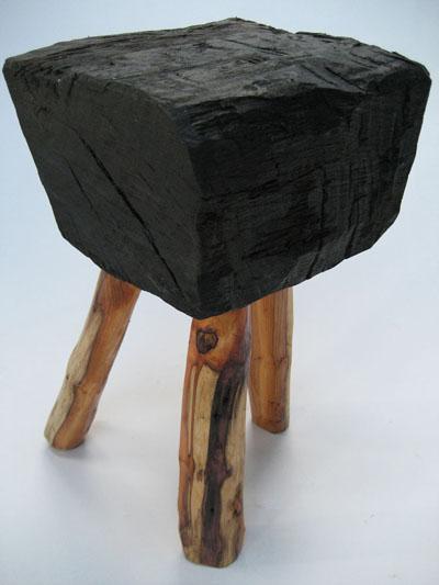 le ch ne des marais les myst res d 39 un bois fossilis ecoute le bois. Black Bedroom Furniture Sets. Home Design Ideas