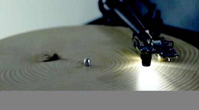 musique de cernes de bois