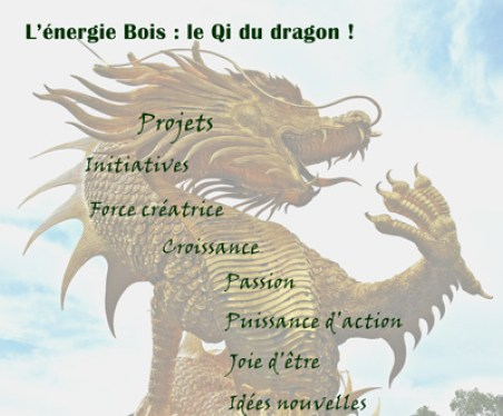dragon feng shui bois