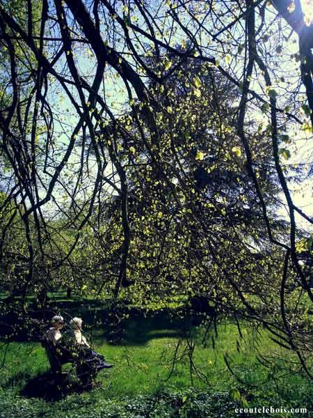 auprès de mon arbre je vivais heureux ecoutelebois