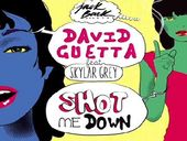 David Guetta Shot Me Down ft Skylar Grey