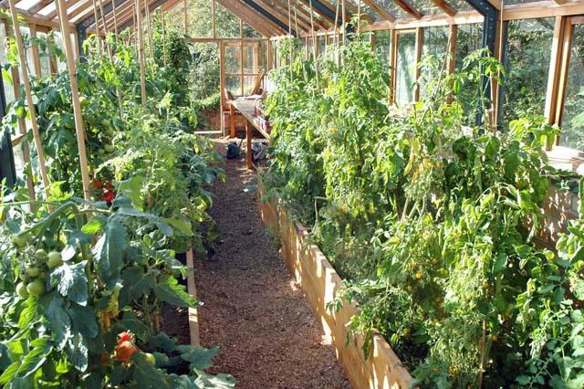 FRESH Gardens