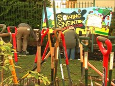 sowing sneinton planting Nottingham's first fruit forest