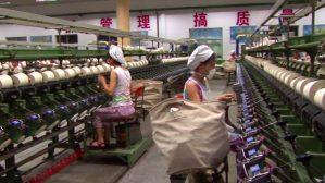 Chaîne usine de coton