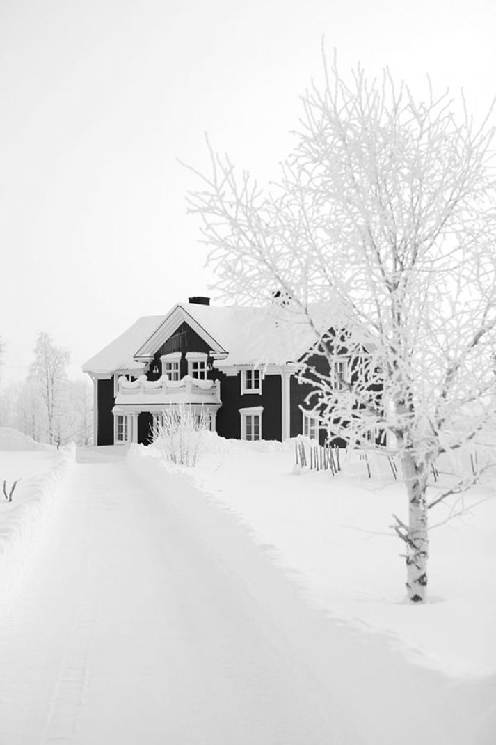 stunning black and white traditional style house in Scandinavia