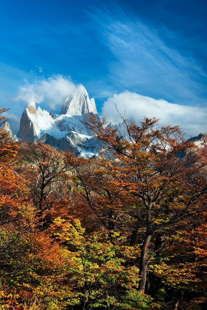 Discover The Wonder Of The Los Glaciares National Park In