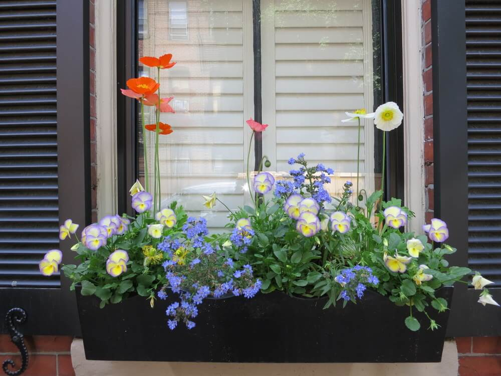 20 Wonderfull Window and Balcony Flower Box Ideas That You
