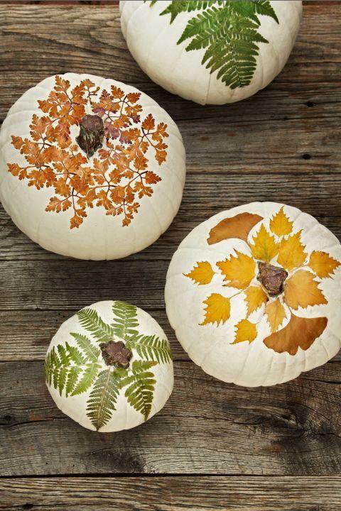 jack-carved-pumpkins