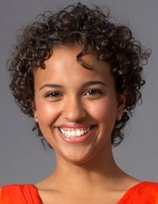 Groovy 50 Cute Short Curly Hairstyles For Black Woman Ecstasycoffee Schematic Wiring Diagrams Amerangerunnerswayorg
