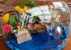 #plant #natural #forest #gift #hediyelik #terary my # design #terrariumworkshop #teraryumworkshop
