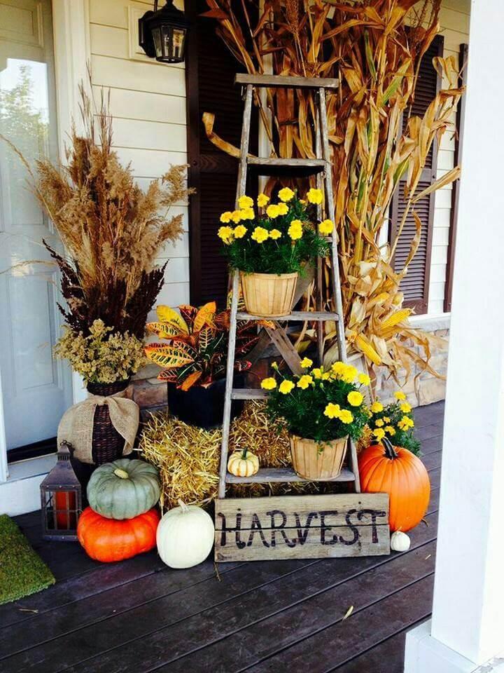 Best Halloween Fall Decoration Ideas