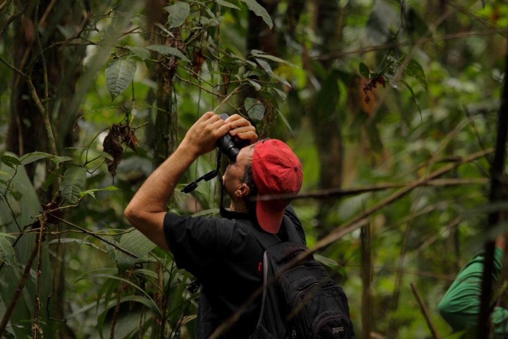 Birdwatching in Ecuador