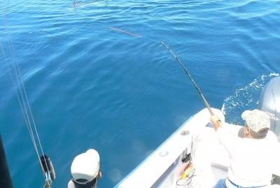 santo-domingo-y-pesca-281