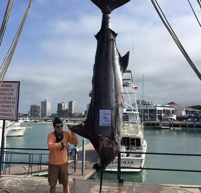 2016 – Ecuagringo Marlin Report August 6-9, 2016