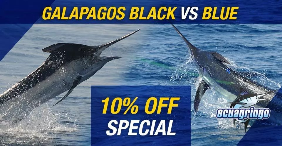 Black & Blue Marlin 10% Off Special For Galapagos Islands