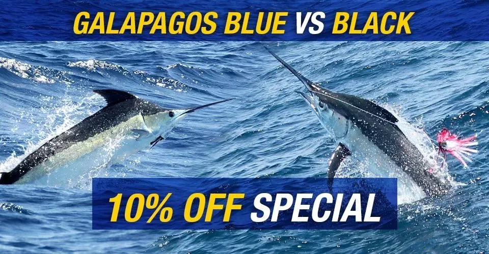Blue vs Black Marlin Special 10% Off Going On Now