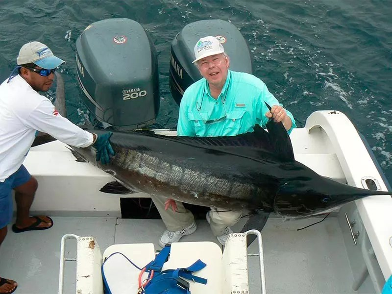 Galapagos marlin fishing santa cruz gallery 06 ecuagringo for Santa cruz fishing