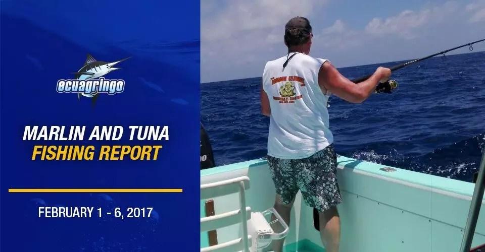 Marlin & Tuna Report South America February 1 – 6, 2017