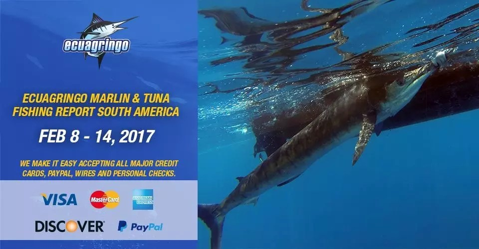Marlin & Tuna Fishing Report South America, Feb 8-14, 2017