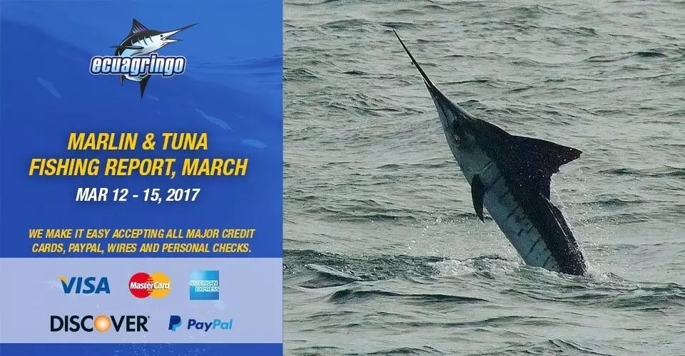 Marlin & Tuna Fishing Report, March 12-15 2017