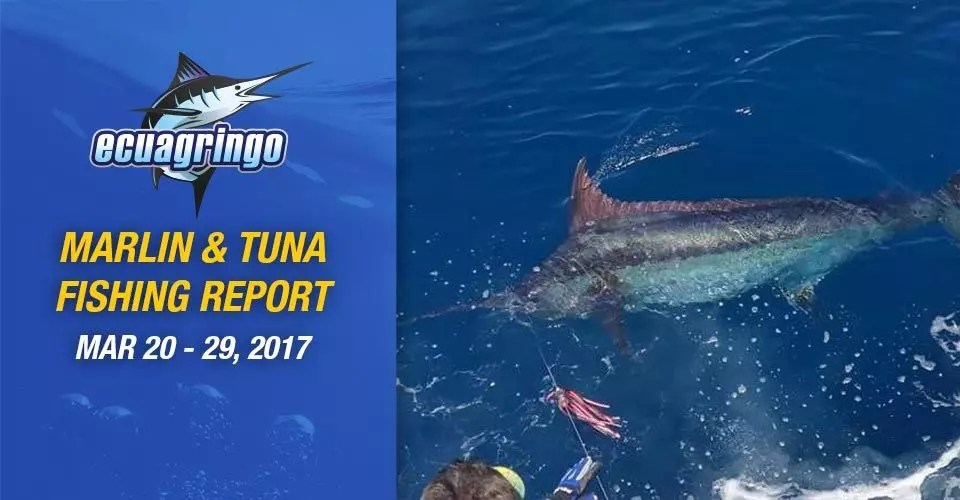 Marlin & Tuna Fishing Report Galapagos, Ecuador & Peru, March 20-29 2017