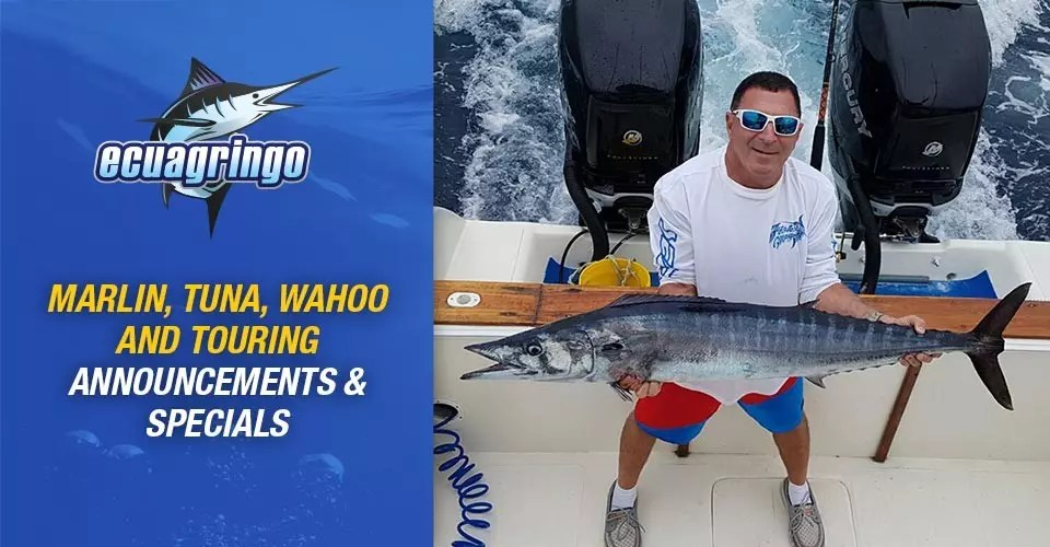 Marlin, Tuna, Wahoo and Touring Announcements & Specials