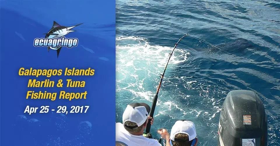 Marlin & Tuna Report Galapagos Islands, April 25-29, 2017
