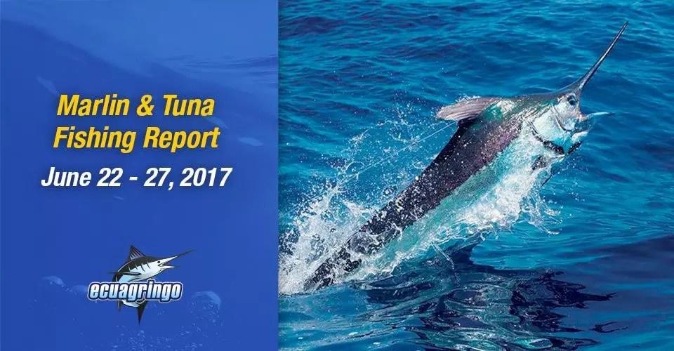 Marlin & Tuna Fishing Report, June 22-27, 2017