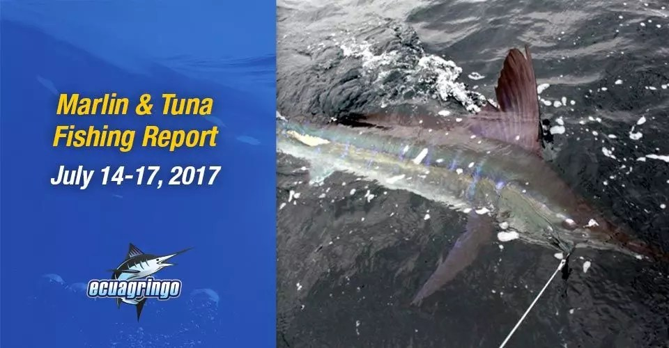 Marlin & Tuna Fishing Report July 17-20, 2017