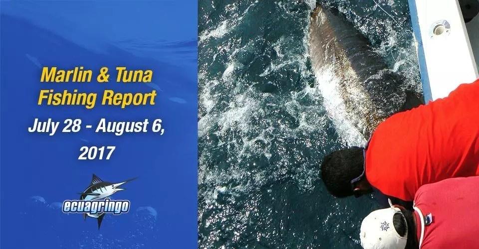 Marlin & Tuna Fishing Report July 28 to August 6, 2017
