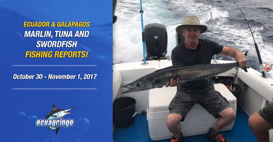 Manta has been producing a good wahoo and grouper bites as well!