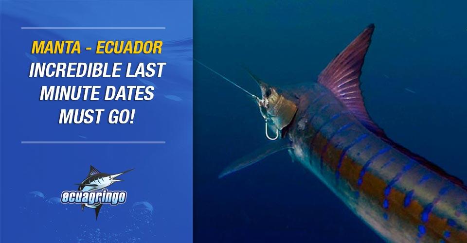Manta-Ecuador Incredible Last Minute Dates Must Go!