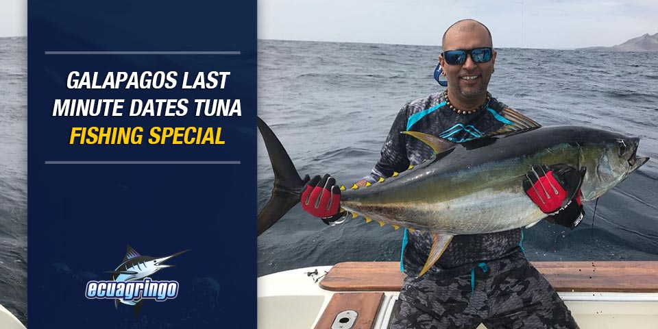 Galapagos Last Minute Dates Tuna Fishing Special – Only One Set Of Dates Left!!