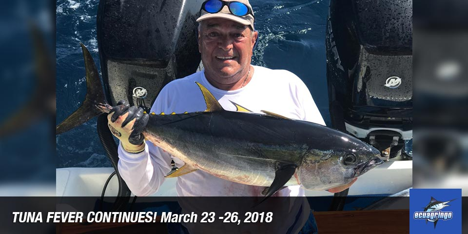 fishing reports 20180327 marlin tuna wahoo swordfish ecuador galapagos manta 01
