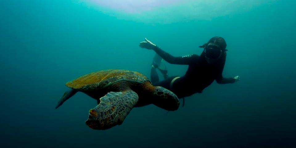 5 Reasons To Fish & Explore The Galapagos Islands