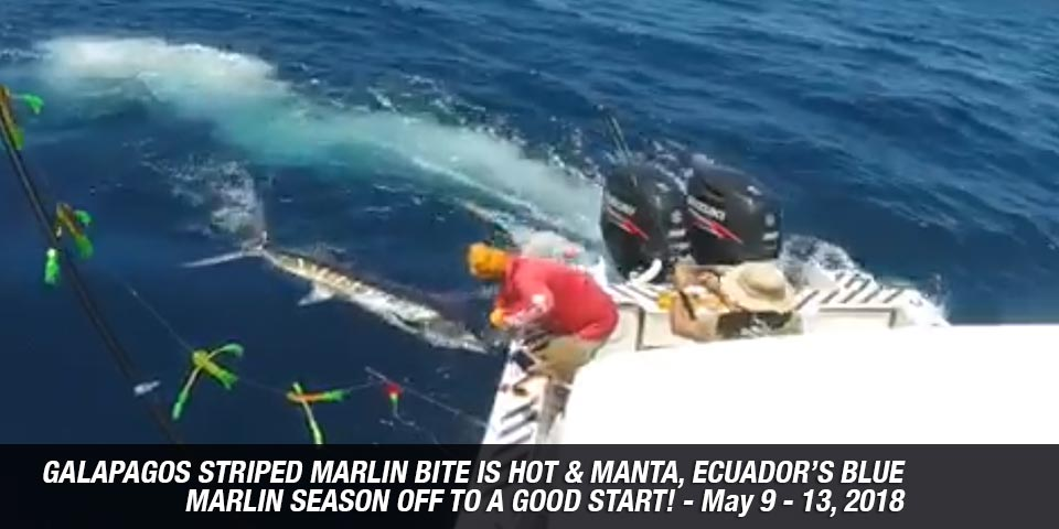 fishing reports 20180514 marlin tuna wahoo swordfish ecuador galapagos manta 01a