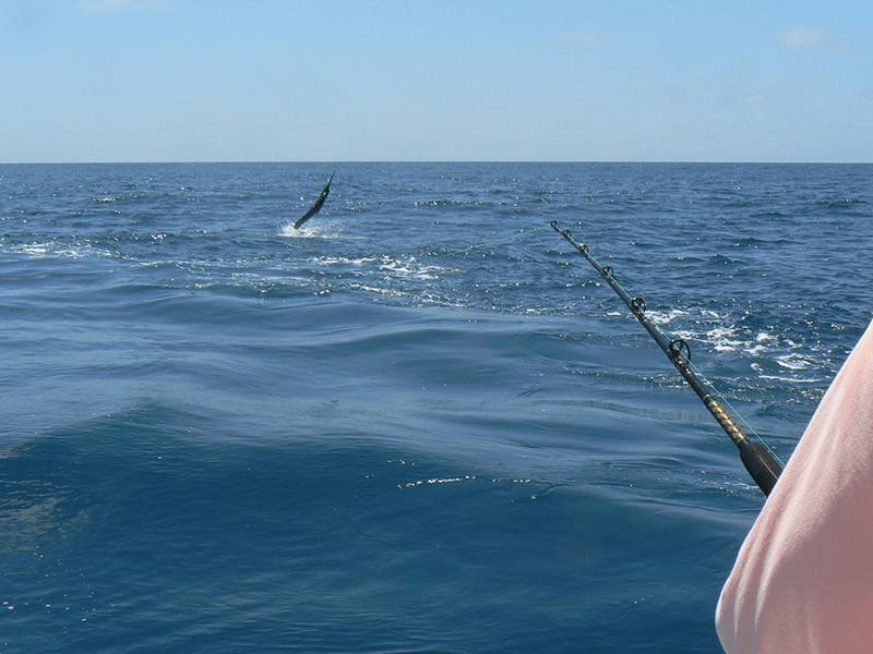 promotions 20180524 galapagos manta ecuador fishing 03