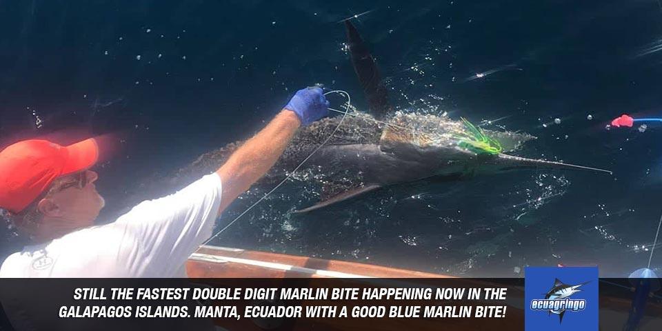 fishing reports 20180604 marlin tuna wahoo swordfish ecuador galapagos manta 00