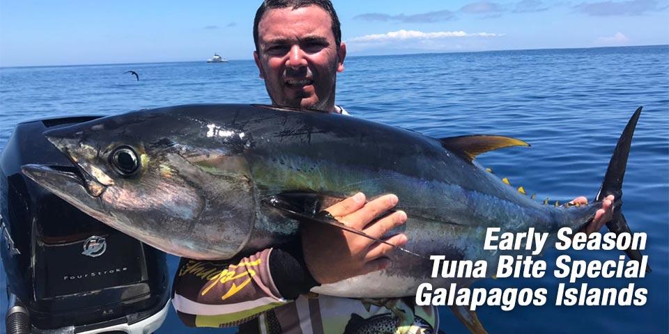 promotions tuna bite fishing 01