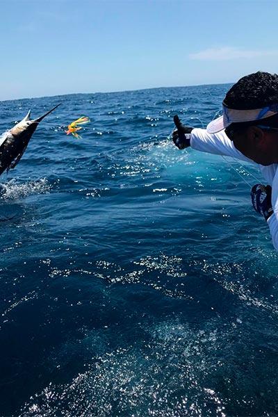 promotion 20190313 marlin fishing 03