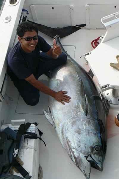 bigeye tuna fishing 02