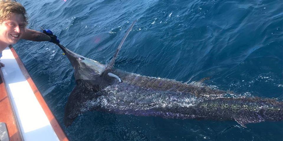 ecuagringo marlin fishing report 20190627 01